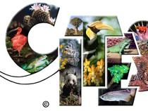 CITES - The Convention on International Trade in Endangered Species of Wild Fauna and Flora image