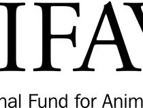 International Fund for Animal Welfare image
