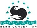 Bern Convention  image